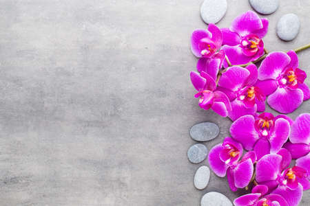 Orchid and spa stones on a stone background. Spa and wellnes scene. Foto de archivo - 99378920