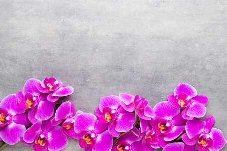 Orchid and spa stones on a stone background. Spa and wellnes scene. Foto de archivo - 99739681