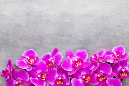Orchid and spa stones on a stone background. Spa and wellnes scene. Foto de archivo - 100378867
