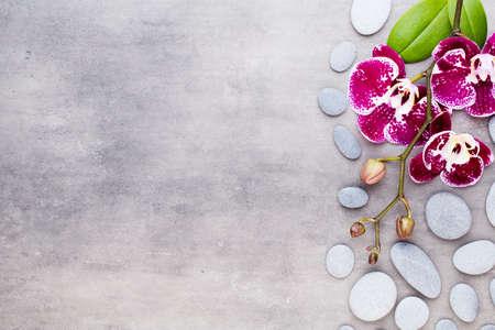 Piedras de orquídeas y spa sobre un fondo de piedra. Escena de spa y bienestar.