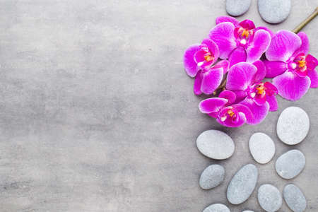 Orchid and spa stones on a stone background. Spa and wellnes scene. Foto de archivo - 106077817