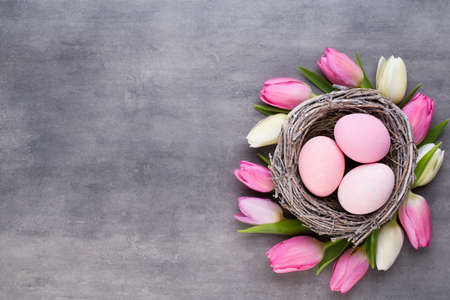 Pink tulip with pink eggs nest on a gray background. Easter greetings card.
