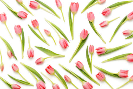 Floral pattern made of pink tulip, green leaves, branches on white background. Flat lay, top view. Valentines background. Floral pattern. Pattern of flowers. Flowers pattern texture