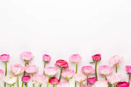 Mooie gekleurde ranonkel bloemen op een wit