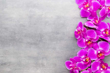 Orchid and spa stones on a stone background. Spa and wellnes scene.