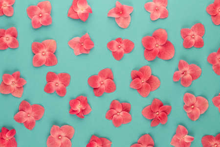 Flowers composition. Pattern made of pink flowers background. Flat lay, top view, copy space.