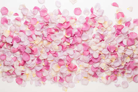 Pastel rose flowers petals on white background. Flat lay, top view, copy space. Banco de Imagens