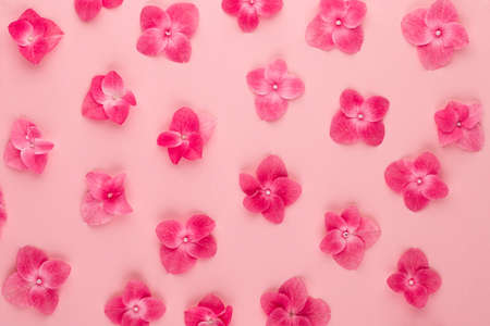 Flowers composition. Pattern made of pink flowers