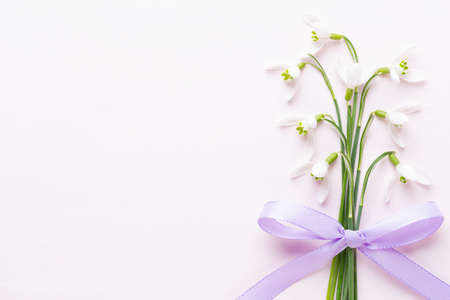 Fresh snowdrops on pink background with place for text. Spring greeting card. Flat lay. Stockfoto
