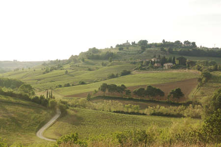 chianti panorama photo