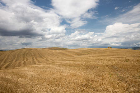 Tuscan landscape in Val di Orcia near Castiglione di Orcia village in province of Siena, Italy photo