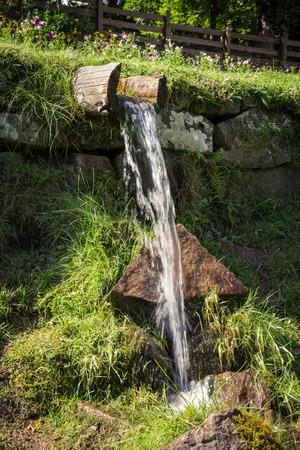 source d eau: Source naturelle d'eau fraîche et claire dans un jardin