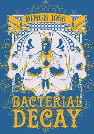 bacterial: Bacterial decay