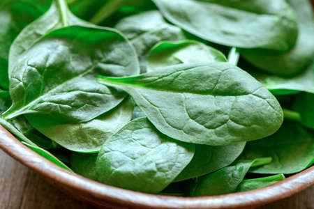 Spinach Stockfoto