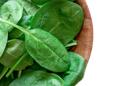 baby spinach: Spinach