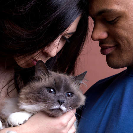 beloved: portrait of an interracial couple with their beloved cat Stock Photo