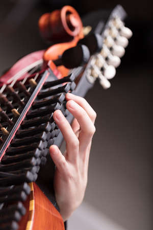 pegheads: hands of a nyckhelharpor playing this handcrafted ancient traditional Swedish musical instrument, used in a folk concert or dance party