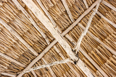 Detail of a straw roof  on the beach at Celestun, Yucatan, Mexico Stock Photo
