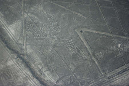 Aerial picture of the Spider figure at Nazca lines seen from the plane, Nazca lines, Peru