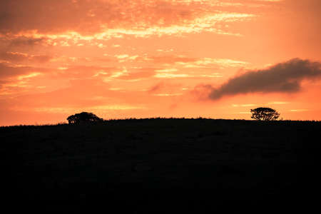 Picture of the sun rising at dawn over the hills of the Hluhluwe - imfolozi National Park in South africa 版權商用圖片 - 140260777