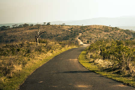 Picture of a safari road in the Hluhluwe - imfolozi National Park in South africa 版權商用圖片