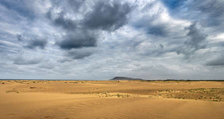 Panoramic view of the beach at St.Lucia estuary, in the Isimangaliso National Park in Southafrica