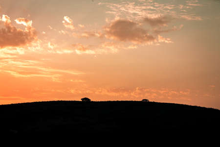 Picture of the sun rising at dawn over the hills of the Hluhluwe - imfolozi National Park in South africa 版權商用圖片 - 140261347