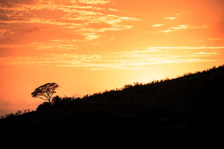 Picture of the sun rising at dawn over the hills of the Hluhluwe - imfolozi National Park in South africa 版權商用圖片 - 140261424