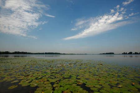 catchment: Superior lake area, Mantua Italy