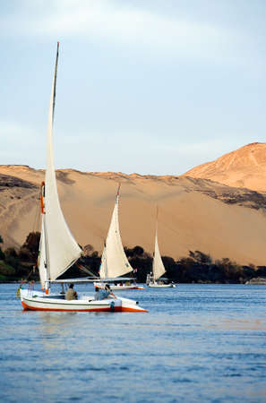 nile river: Aswan, Egypt - December 16, 2005: sailing feluccas on the Nile river in the town outskirts Editorial