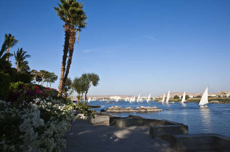 botanic garden: Egypt, Aswan,view on the Nile river from botanic garden Stock Photo