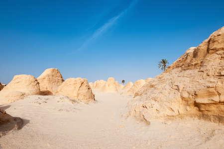 petrified: South of Tunisia, Shara desert,the petrified dune of Debebcha