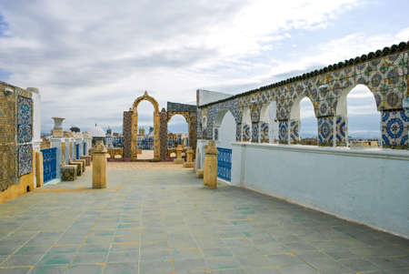 medina: Tunisia, Tunis, view of traditional architectures from a Medina terrace
