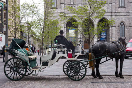 coachman: Montreal, Canada - May 13, 2014: Quebec, a carriage with coachman in Cathedral Square
