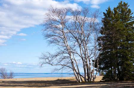 lorenzo: Quebec, Tedoussac, a park on the St Lorenzo river