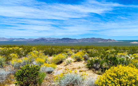 U.S.A. California, the Mojave National Reserve near the Route 66 Stock Photo