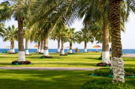qatar: Mesaieed,  Qatar - February 19, 2006: , The Sealine Beach touristic center