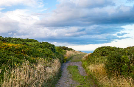 headland: Ireland, Dublin county, landscape of the Howth headland