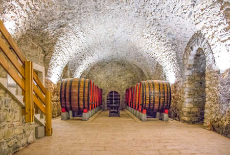 San Michele AllAdige, Italy - June 28, 2012: Fondazione Edmund Mach, the historic cellars of the Agostiniana Abbey, with decorated oak barrels Editorial