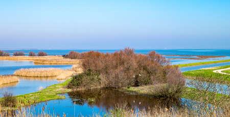 po: Italy, Po delta park, the south area of the Comacchio lagoon Stock Photo
