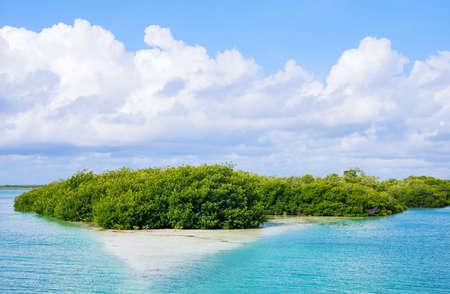 roo: Quintana Roo, Mexico, the Sian Kaan lagoon reserve Stock Photo