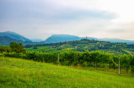 Valdobbiadene, Italy, the Prosecco vineyards on the hills of valdobbiadene conegliano area