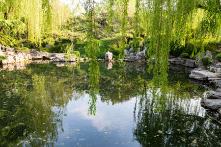 The park of Baotu Quan, also called the Best Spring in the World in the heart of Jinan city, Shandong, China 写真素材