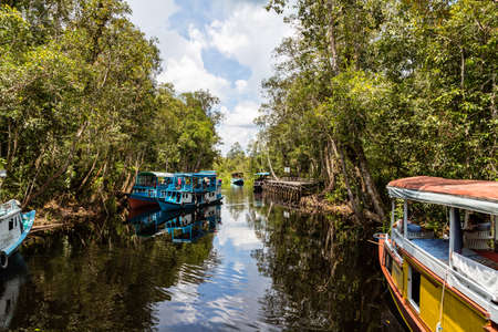 Oct 2017, Tanjung Puting National Park, Kumai, Borneo, Indonesia: Klotok floating on the black water river outside Camp Leakey, the most famous feeding station for the Orangutans inside the par