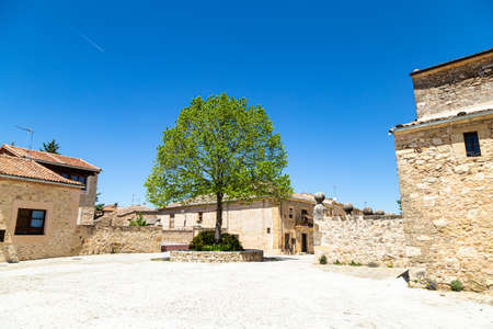 Pedraza, Castilla Y Leon, Spain: a lonely tree in the Plaza del Ganado. Pedraza is one of the best preserved medieval villages of Spain, not far from Segovia