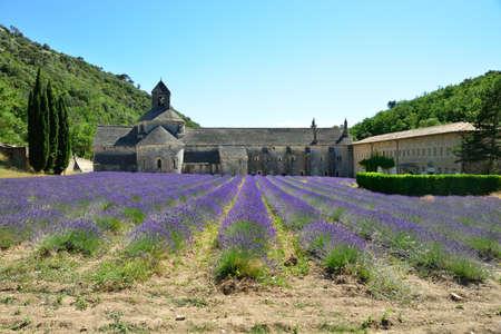 senanque: Abbey of Senanque Provance France