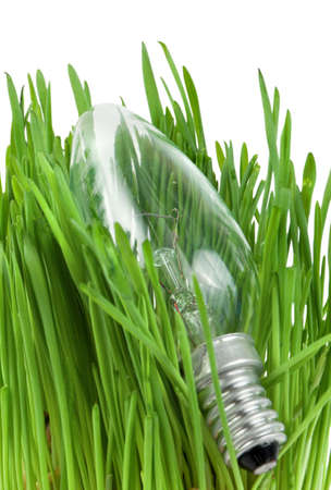 Lamp in grass isolated on white background Stock Photo - 7532181