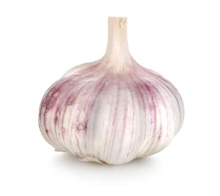 Garlic Stock Photo - 10791111