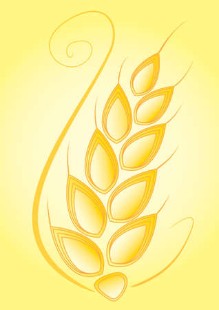 oat field: Vector illustration of wheat and blades of grass in front of a yellow, sunny background