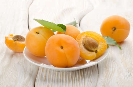 Apricots in a white plate photo